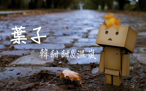Ye Zi 叶子 Leaves Lyrics 歌詞 With Pinyin By Han Tian Tian 韩甜甜 Wen Lan 温岚