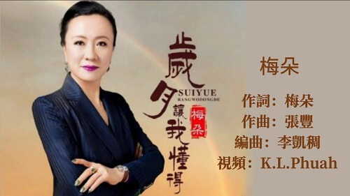 Sui Yue Rang Wo Dong De 岁月让我懂得 Years Have Taught Me Lyrics 歌詞 With Pinyin By Mei Duo 梅朵