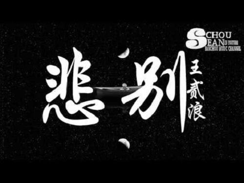 Bei Bie 悲别 Don't Sad Lyrics 歌詞 With Pinyin By Wang Er Lang 王贰浪