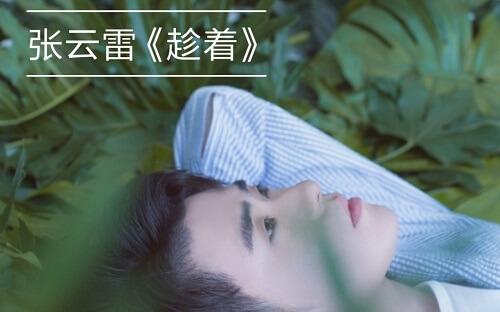 Chen Zhe 趁着 Taking The Advantage Of Lyrics 歌詞 With Pinyin By Zhang Yun Lei 张云雷