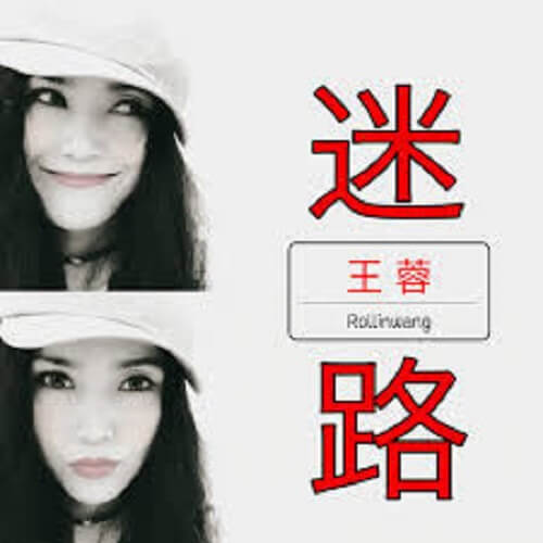 Mi Lu 迷路 Get Lost Lyrics 歌詞 With Pinyin By Wang Rong 王蓉
