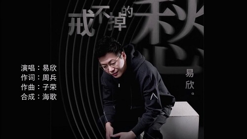 Jie Bu Diao De Chou 戒不掉的愁 Can't Get Rid Of The Worry Lyrics 歌詞 With Pinyin By Yi Xin 易欣