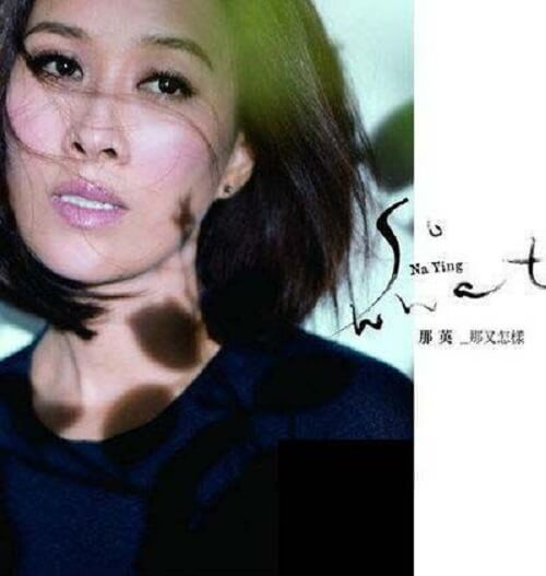 Na You Zen Yang 那又怎样 So What Lyrics 歌詞 With Pinyin By Na Ying 那英