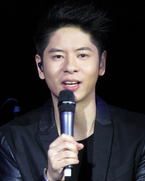 Deng Dui 登对 Regarding Lyrics 歌詞 With Pinyin By Xu Ting Keng 许廷铿 Alfred Hui Ting Hang
