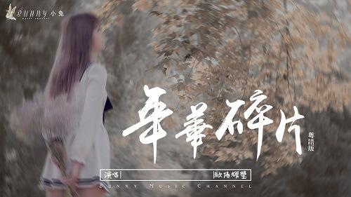 Nian Hua Sui Pian 年华碎片 Love Fragments Lyrics 歌詞 With Pinyin By Ou Yang Yao Ying 欧阳耀莹