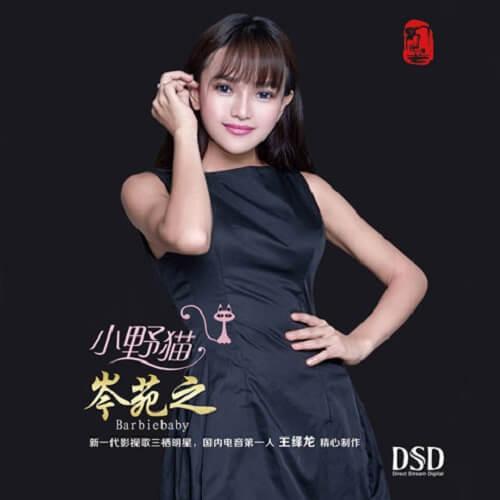 Xiao Ye Mao 小野猫 The Small Cat Lyrics 歌詞 With Pinyin By Cen Yu Qiao 岑雨桥