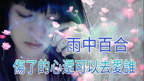 Shang Le De Xin Hai Ke Yi Qu Ai Shui 伤了的心还可以爱谁 Broken Heart Can Also Love Who Lyrics 歌詞 With Pinyin By Yu Zhong Bai He 雨中百合