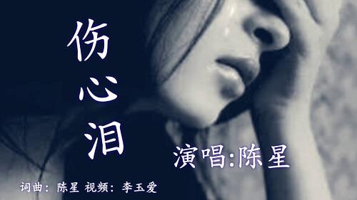 Shang Xin Lei 伤心泪 Sad Tears Lyrics 歌詞 With Pinyin By Chen Xing 陈星