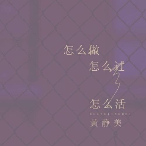 Zen Me Zuo Zen Me Guo Zen Me Huo 怎么做怎么过怎么活 How To Do How To Live Lyrics 歌詞 With Pinyin By Huang Jing Mei 黄静美