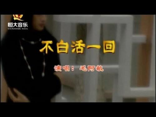 Bu Bai Huo Yi Hui 不白活一回 Never Live In Vain Lyrics 歌詞 With Pinyin By Mao A Min 毛阿敏