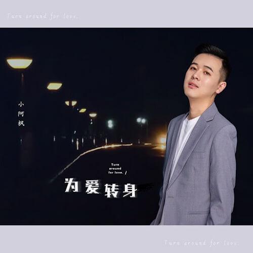 Wei Ai Zhuan Shen 为爱转身 Turn For Love Lyrics 歌詞 With Pinyin By Xiao A Feng 小阿枫