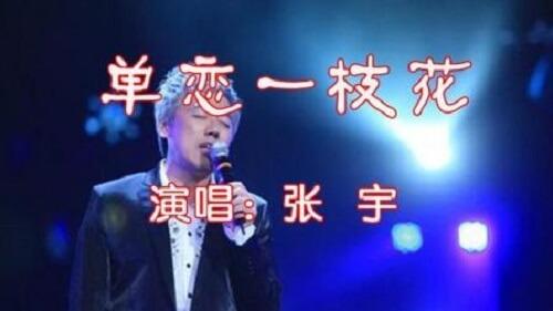 Dan Lian Yi Zhi Hua 单恋一枝花 Unrequited Love A Flower Lyrics 歌詞 With Pinyin By Zhang Yu 张宇 Phil Chang