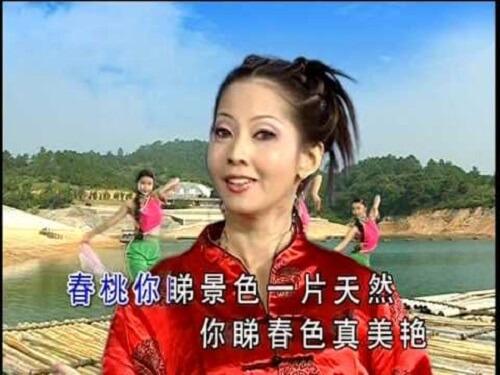 Nian San Shi Wan Da Tuan Yuan 年三十晚大团圆 Happy Reunion On New Year's Eve Lyrics 歌詞 With Pinyin By Liu Jun Er 刘珺儿