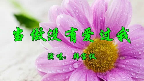 Dang Zuo Mei You Ai Guo Wo 当作没有爱过我 As If I Did Not Love Lyrics 歌詞 With Pinyin By Han Bao Yi 韩宝仪