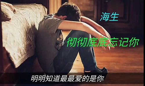 Che Che Di Di Wang Jie Ni 彻彻底底忘记你 Completely Forget You Lyrics 歌詞 With Pinyin By Hai Sheng 海生 Allan