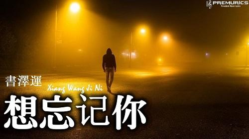 Xiang Wang Ji Ni 想忘记你 Want To Forget You Lyrics 歌詞 With Pinyin By Shu Ze Yun 书泽运