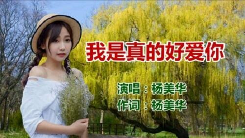 Wo Shi Zhen De Ai Ni 我是真的好爱你 I Really Love You Lyrics 歌詞 With Pinyin By Yang Mei Hua 杨美华