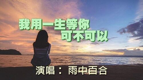 Wo Yong Yi Sheng Deng Ni Ke Bu Ke Yi 我用一生等你可不可以 I Wait For You With A Lifetime Can Lyrics 歌詞 With Pinyin By Yu Zhong Bai He 雨中百合
