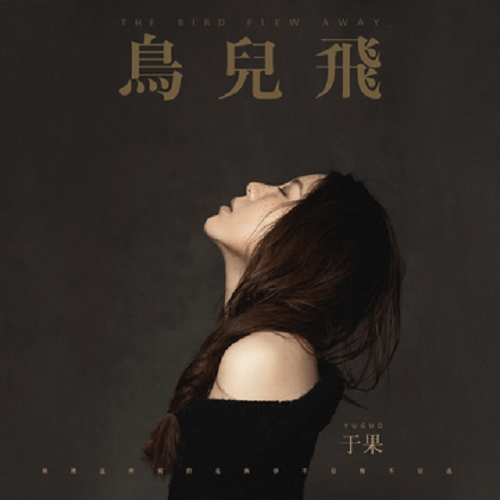 Niao Er Fei 鸟儿飞 The Birds Fly Lyrics 歌詞 With Pinyin