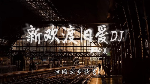 Xin Huan Du Jiu Ai 新欢渡旧爱 New Farewell To Old Love Lyrics 歌詞 With Pinyin