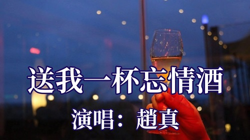 Song Wo Yi Bei Wang Qing Jiu 送我一杯忘情酒 Give Me A Glass Of Forgetfulness Lyrics 歌詞 With Pinyin