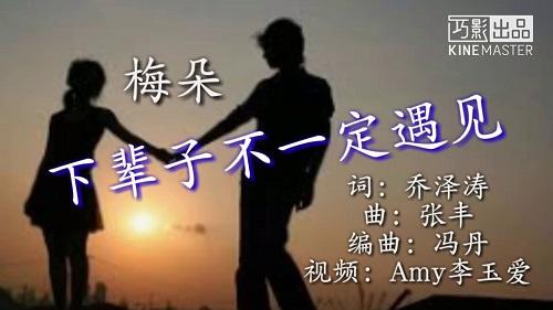 Xia Bei Zi Wo Men Bu Yao Yu Jian 下辈子我们不要遇见 Next Life We Don't Meet Lyrics 歌詞 With Pinyin