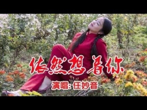 Yi Ran Xiang Zhe Ni 依然想着你 Still Thinking Of You Lyrics 歌詞 With Pinyin