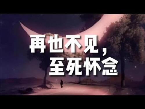 Zai Ye Bu Jian Zhi Si Huai Nian 再也不见至死怀念 Never To See The Dead Lyrics 歌詞 With Pinyin