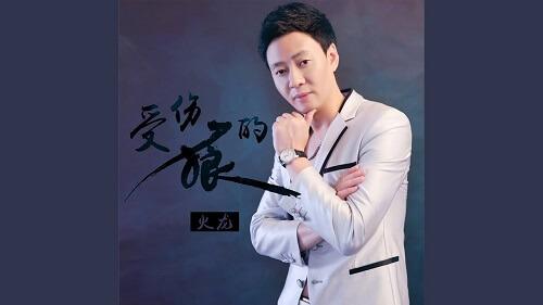 Shou Shang De Lang 受伤的狼 A Wounded Wolf Lyrics 歌詞 With Pinyin