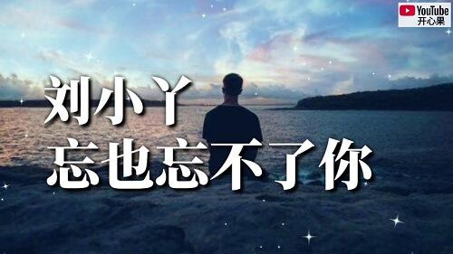 Wang Ye Wang Bu Liao Ni 忘也忘不了你 I Will Never Forget You Lyrics 歌詞 With Pinyin
