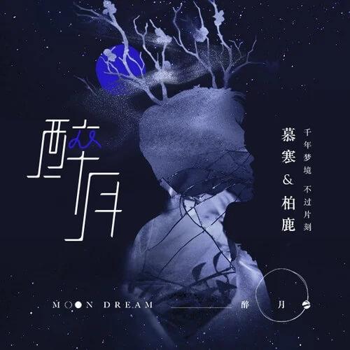 Zui Yue 醉月 Drunk On Lyrics 歌詞 With Pinyin