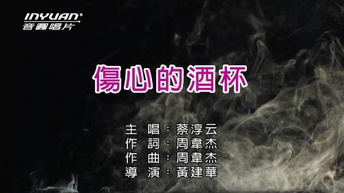 Shang Xin De Jiu Bei 伤心的酒杯 Sad Cup Lyrics 歌詞 With Pinyin
