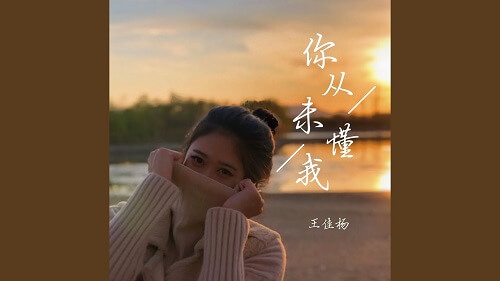Ni Cong Wei Dong Wo 你从未懂我 You Never Understood Me Lyrics 歌詞 With Pinyin