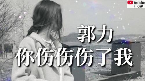 Ni Shang Shang Shang Le Wo 你伤伤伤了我 You Hurt Me Lyrics 歌詞 With Pinyin