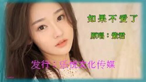 Ru Guo Bu Ai Le 如果不爱了 If You Don't Love Lyrics 歌詞 With Pinyin
