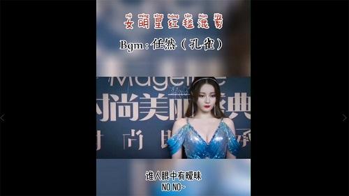 Kong Que 孔雀 The Peacock Lyrics 歌詞 With Pinyin