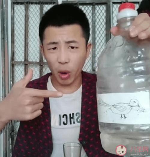 Xiao Niao Fu Te Jia 小鸟伏特加 Bird Vodka Lyrics 歌詞 With Pinyin