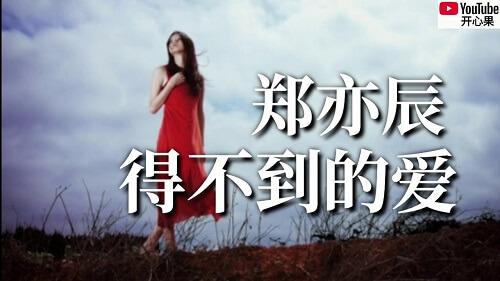 De Bu Dao De Ai 得不到的爱 Unearned Love Lyrics 歌詞 With Pinyin