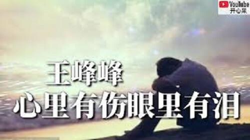 Xin Li You Shang Yan Li You Lei 心里有伤眼里有泪 Hurt In The Heart And Tears In The Eyes Lyrics 歌詞 With Pinyin