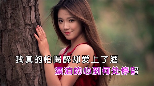 Pa Zui Que Ai Shang Jiu 怕醉却爱上酒 Afraid Of Getting Drunk But Love Wine Lyrics 歌詞 With Pinyin