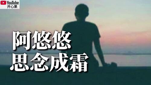 Si Nian Cheng Shuang 思念成霜 Thoughts Into Cream Lyrics 歌詞 With Pinyin