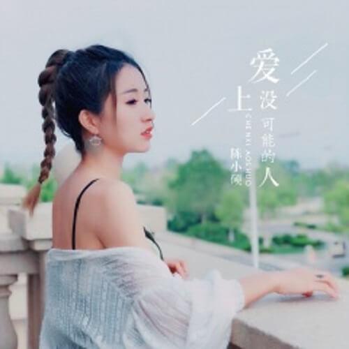 Ai Shang Mei You Ke Neng De Ren 爱上没有可能的人 Fall In Love With The Impossible Lyrics 歌詞 With Pinyin