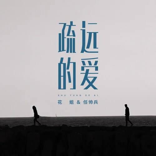 Shu Yuan De Ai 疏远的爱 Distant Love Lyrics 歌詞 With Pinyin