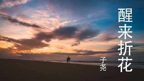 Xing Lai Zhe Hua 醒来折花 Wake Up Fold The Flowers Lyrics 歌詞 With Pinyin