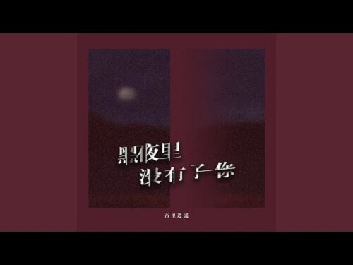 Hei Ye Li Mei You Le Ni 黑夜里没有了你 The Night Without You Lyrics 歌詞 With Pinyin