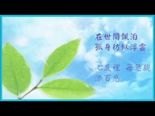 Fu Mu En 父母恩 Parents Grace Lyrics 歌詞 With Pinyin