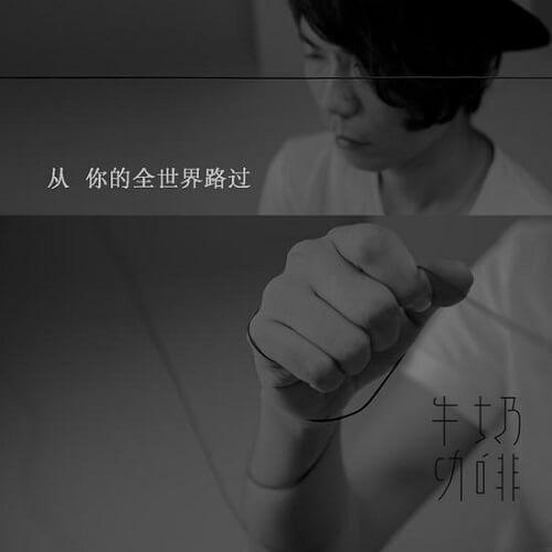 Cong Ni De Quan Shi Jie Lu Guo 从你的全世界路过 From All Over Your World Lyrics 歌詞 With Pinyin