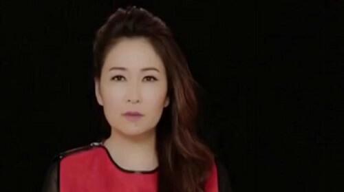 Liao Duan 了断 End Lyrics 歌詞 With Pinyin