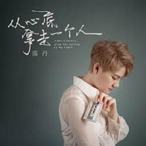Cong Xin Di Na Zou Yi Ge Ren 从心底拿走一个人 Take A Person From The Bottom Of Your Heart Lyrics 歌詞 With Pinyin