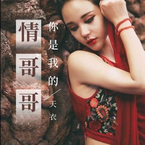 Ni Shi Wo De Qing Ge Ge 你是我的情哥哥 You Are My Love Brother Lyrics 歌詞 With Pinyin
